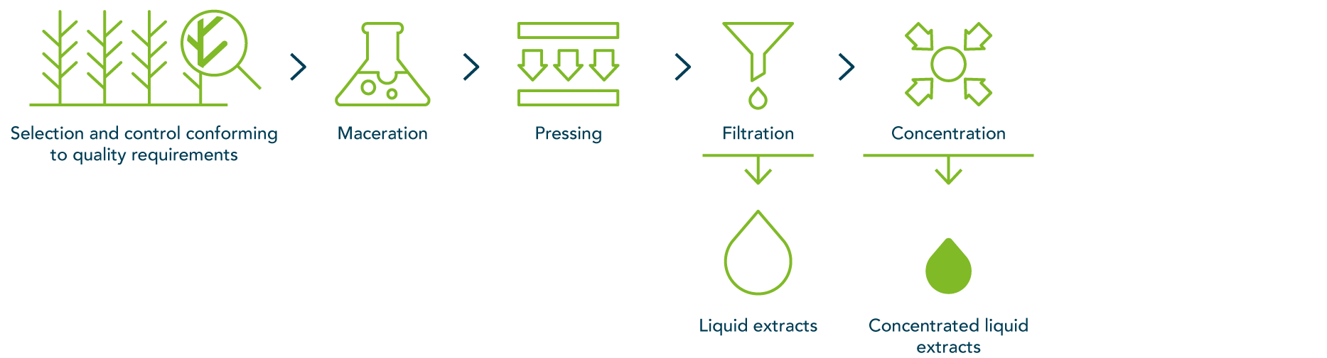 Our extraction processes