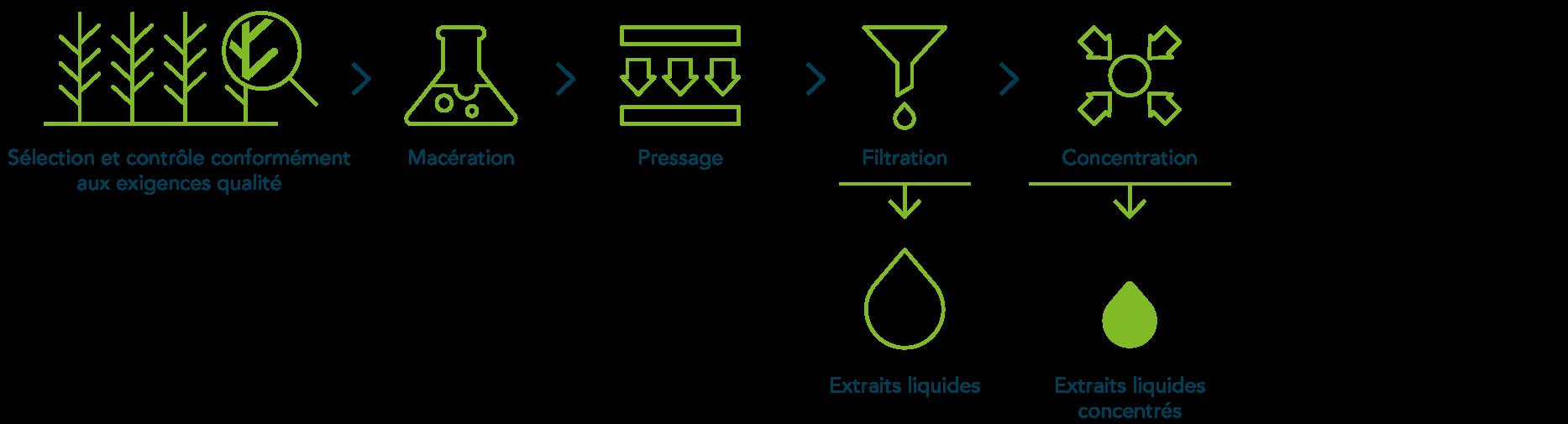 Extraits liquides